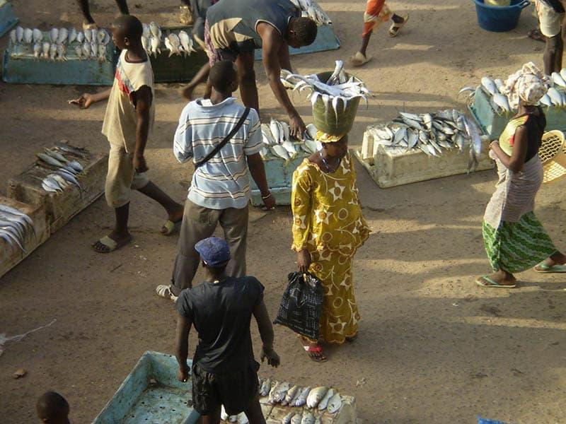 Impressionen Markt Gambia 2